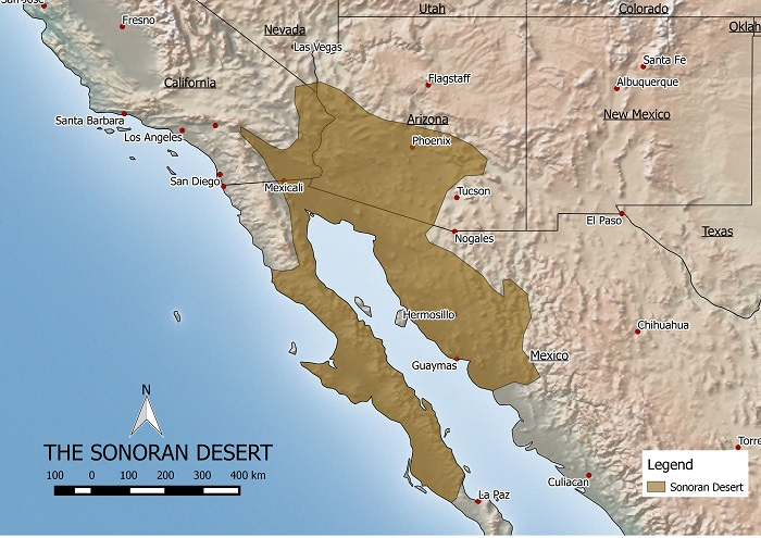 Sonoran desert map