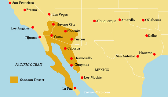 Sonoran Desert Ecosystem - Sonoran desert on us map