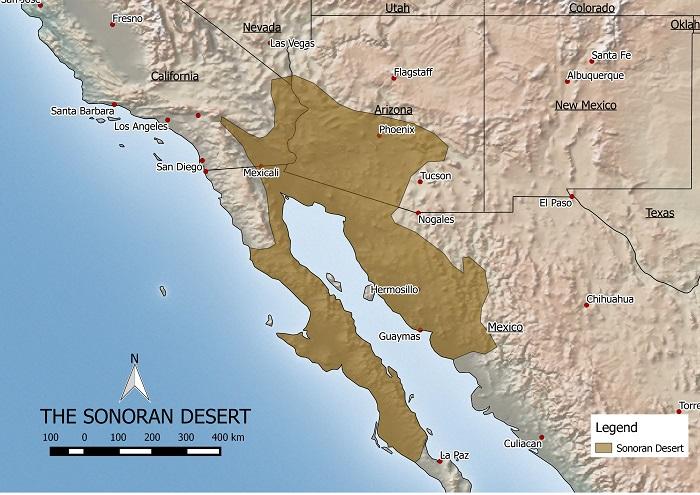 Sonoran desert map